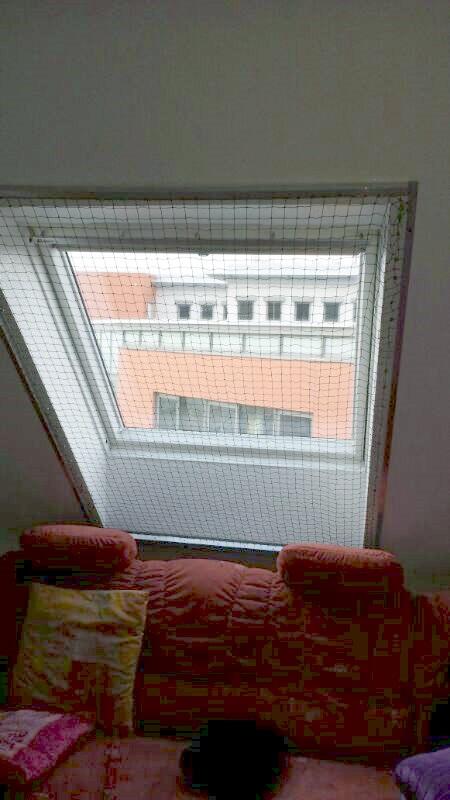 Katzennetz an einem Dachfenster
