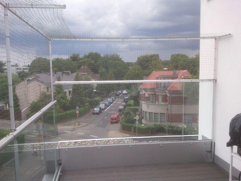 Katzennetz für Terrassen Balkon in Köln