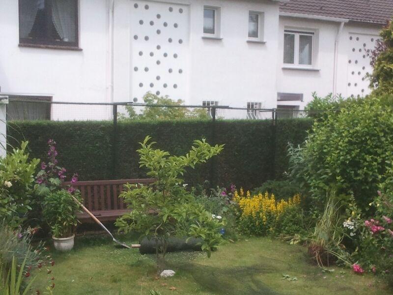 Garten katzensicher gestalten. Katzennetz System für Garten