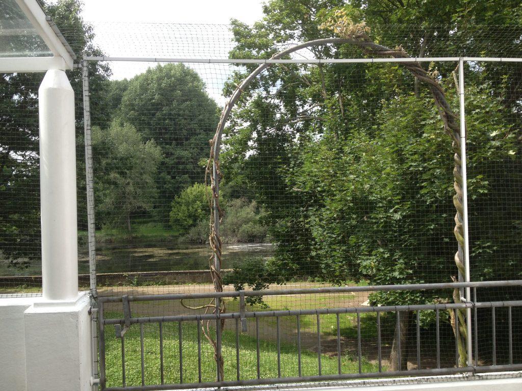 Katzennetz Am Balkon Terrasse In Koln Anbringen Katzennetz Profi