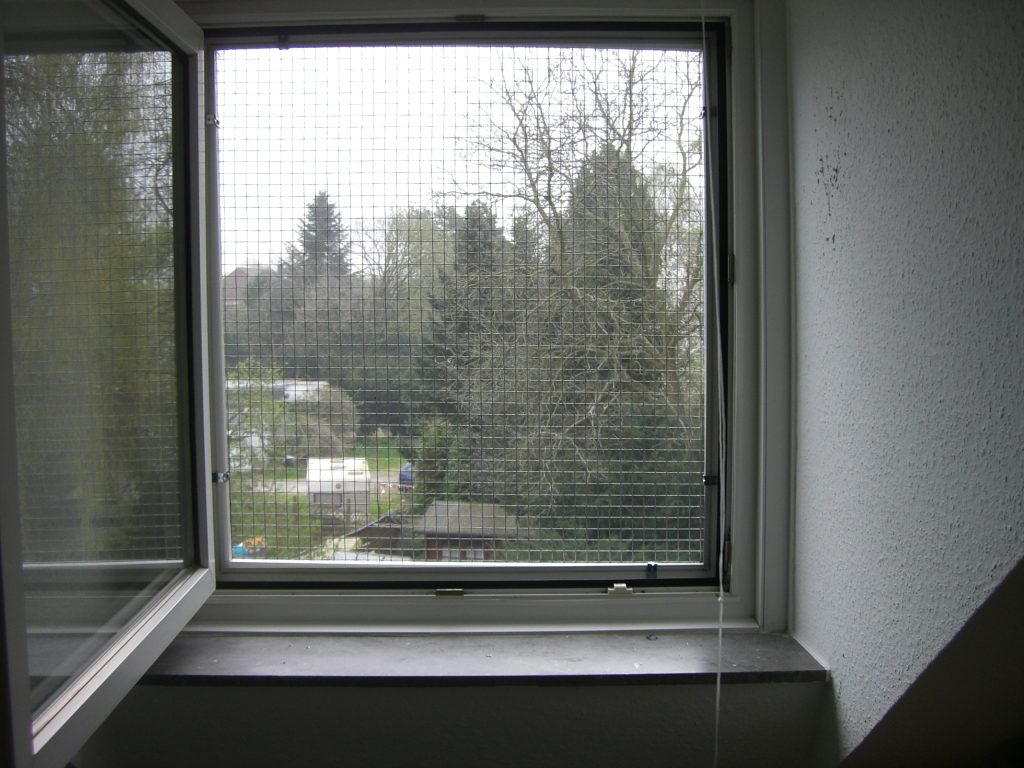 Fenster katzensicher gesichert