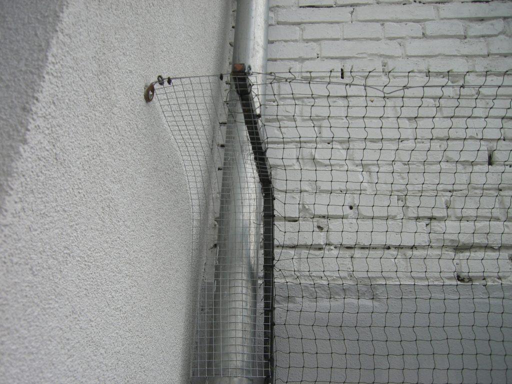 gartenmauer_katzensicher