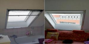 Katzennetz_Dachfenster_Rollo