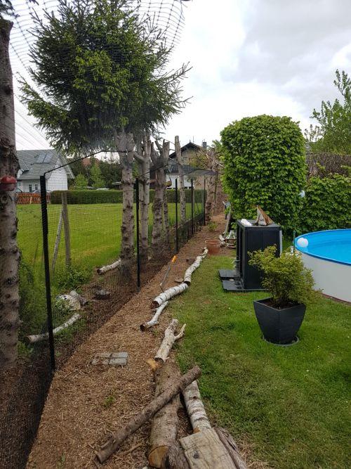 Garten als Freigehege mit Katzenzaun gesichert