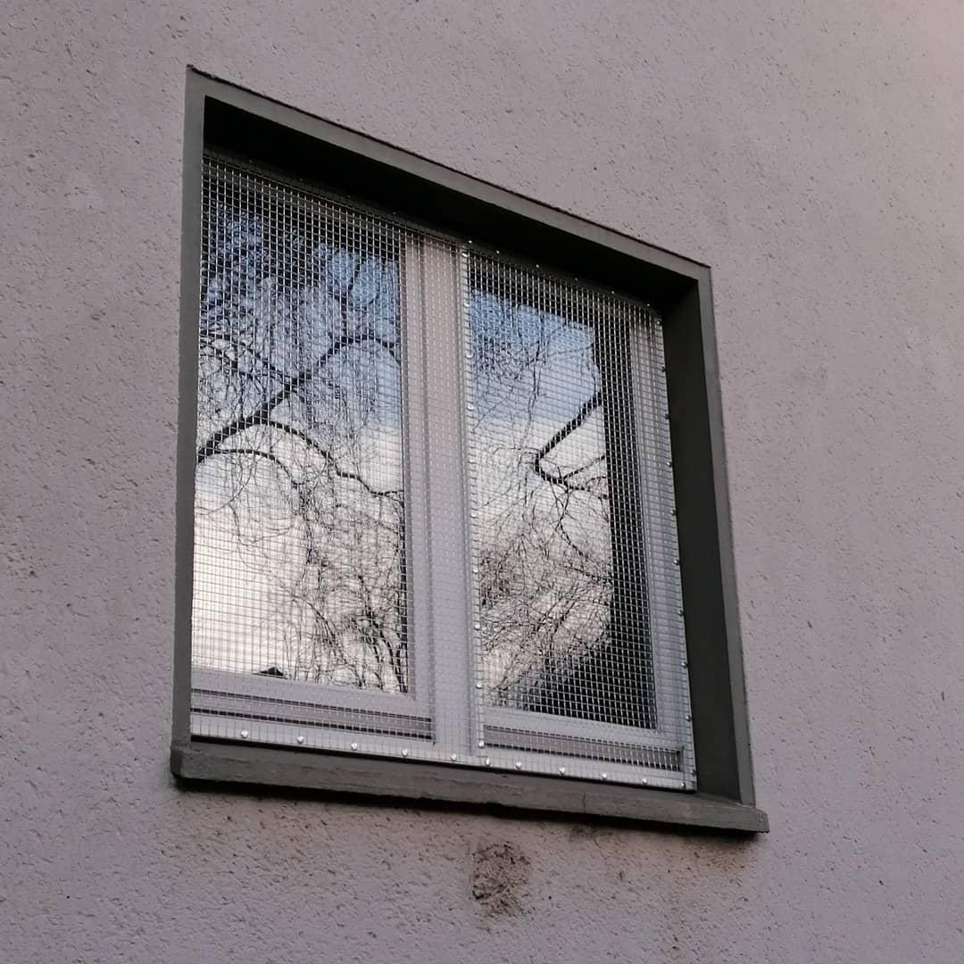 Katzensicheres Fenster ohne bohren